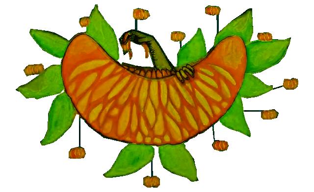 fruto.png